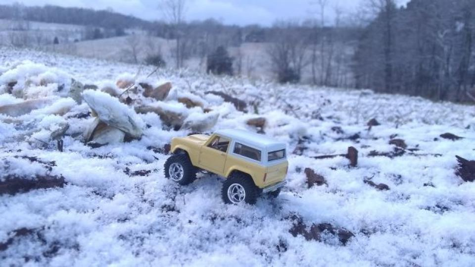 CD winter photo contest